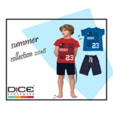 dice jongens zomerset