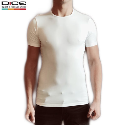 DICE heren T-shirt ronde hals Wit
